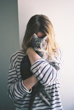 cat and stripes