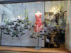 store windows, window displays