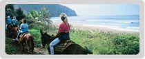 Riding a mule on Molokai
