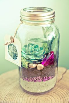 Beautiful terrarium. Have you tried making one? #DIY