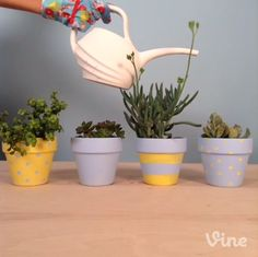 Soil draining out of your freshly planted flower pots? Two words: coffee filters. #Vine #lowesfixinsix