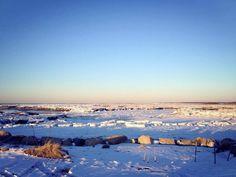Cape cod bay frozen jan 2014