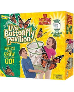 This pop-up butterfly net teaches your child love and respect for nature. It allows them to watch the butterflies grow and then release them into the backyard. Click above to buy one!
