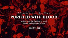 OCTOBER 28 Verse of the Day