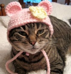 Pet Hat Flower Bear BeanieCat Hat  Pink Yellow by Monarchdancer, $15.00