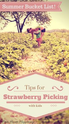7 Tips for taking kids to a strawberry patch