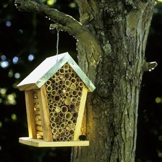 Beehouse. Encourage bees into your garden by providing them with a special home - they'll repay your hospitality by helping to pollinate your plants. It's also popular with greenfly-munching ladybirds.  #homesfornature