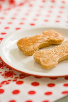 Puppy pancakes!