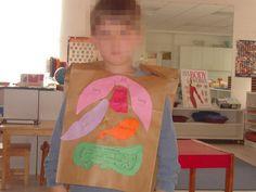 montessori preschool, bodi activ, human bodi