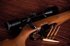 Hunting Gun & Ammo