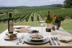 wineries, favorit place, resorts, virginia vineyard, road trips, shenandoah wine, virginia wineri, va wineri, roads