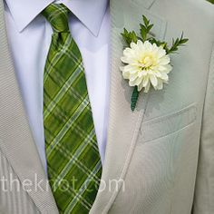 white dahlia with a green tie