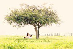 maternity photos, coupl photo, family photos, martinez photographi, photo idea, matern photo, famili photo, pregnant photographi