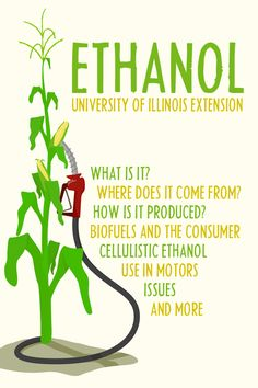 "You've probably heard of the ""green"" gasoline alternative -- but do you really know what's what with ethanol?"