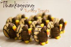 Cute turkeys!
