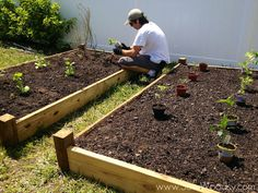 Part Two: How to Build A Raised Garden Bed