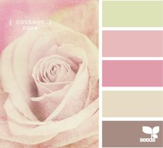 cottage rose!! Love this color pallet for my living room!!!