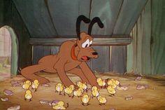 Mother Pluto © Walt Disney