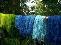 Weld and indigo dyed yarn, photograph by Lynnette Miller