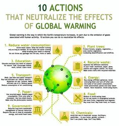Essay on global warming and its effects