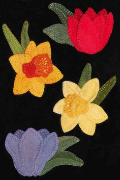 Wool Daffodils and Tulip