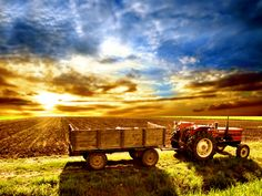 tractor in the field.