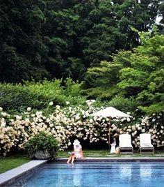 pool, flowers