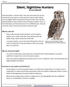 "Owl reading comprehension passage with questions - ""Silent, Nighttime Hunters"" from Super Teacher Worksheets"