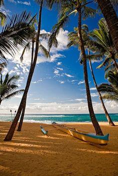 Amazing Maui, Hawaii
