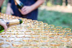 gold rim champagne glasses.