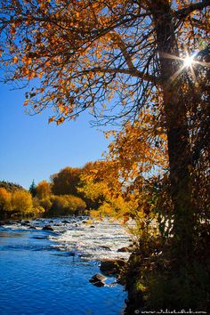 Big Hole River, Montana; photo by Julie Lubick