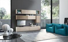 Salon Moderne Avec Inspiration De Stockage