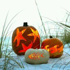 smash pumpkin, carv pumpkin, pumpkin decor, autumn at the beach