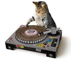 DJ Cat Scratching Post  Cat scratching posts can be fun, yet effective, feline essentials