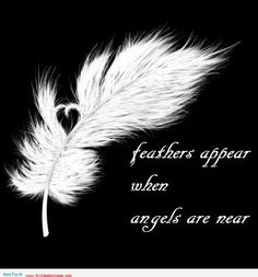 Feathers appears before your eyes when angels comes – Angels quotes