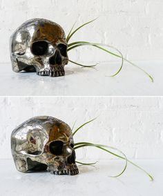 Skull planter #home #decor