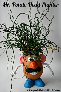 This Mr. Potato Head planter would be fun in a kid's room or in a classroom. Get the how-to from Polish The Stars