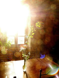 lights, morning light, early mornings, breakfast, morning photography, kitchen windows, best photography, beauti, sun
