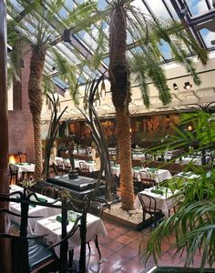 Indoor palm trees add a unique touch to Clyde's of Tysons Corner's indoor space that would be perfect for a modern wedding! {Clyde's Of Tysons Corner}
