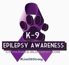 FiveSibes™: Blogging the Change for Canine Epilepsy Awareness