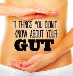 11 Surprising Gut Facts