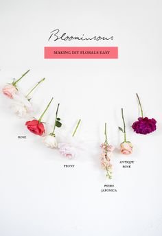 Create your own wedding florals with Bloominous