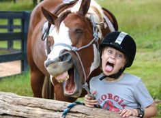 funny animals, funny pets, animal pictures, funny horses, funny animal pics, animal funnies, funny pictures, funny animal photos, hilarious animals