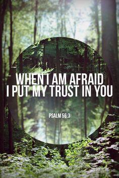 Trusting Him..