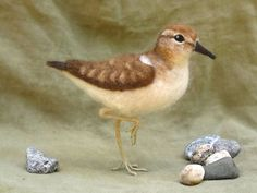 Needle felted sandpiper poseable shorebird by Ainigmati on Etsy