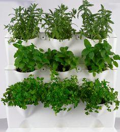 Jardín vertical minigarden blanco por 49.95€ en Planeta Huerto