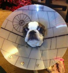 Death Star(e)