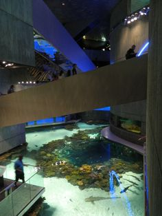 the national aquarium in baltimore, maryland | planning it all