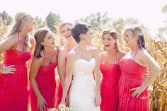 Coral Amsale bridesmaid dresses bridesmaids, galleri, bridesmaid dresses, the dress, wedding colors, bride shoes, bridal parties, dress styles, summer weddings