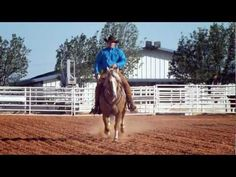 LOL that awkward moment he goes at a horse with a chainsaw...I LOVE Clinton Anderson and his method. I like how he teaches people it's ok to love your horse but when you baby them they get spoiled...and a spoiled horse is a dangerous horse